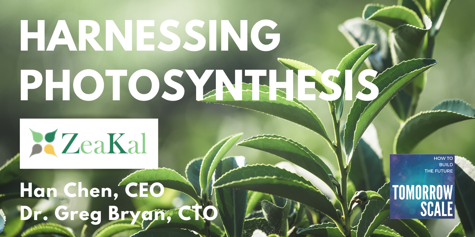 Harnessing Photosynthesis - Zeakal